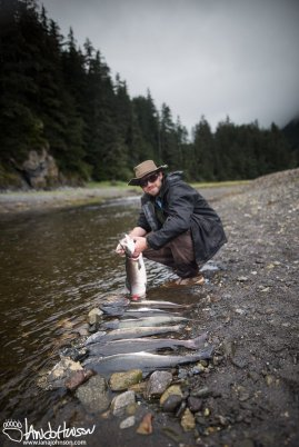 Cleaning a catch of Pink Salmon.